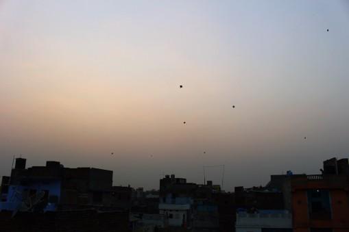 Golden Triangle India Travel Blog (116)