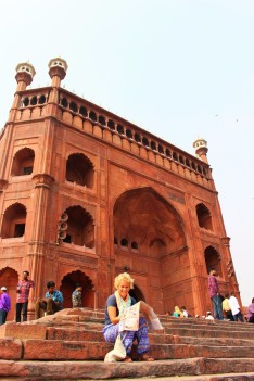 Golden Triangle India Travel Blog (12)