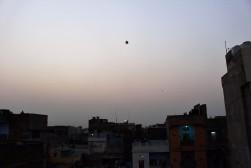 Golden Triangle India Travel Blog (124)