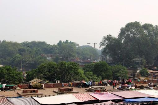 Golden Triangle India Travel Blog (13)