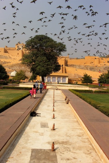 Golden Triangle India Travel Blog (130)