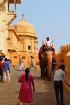 Golden Triangle India Travel Blog (139)