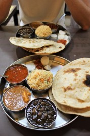 Golden Triangle India Travel Blog (18)