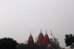 Golden Triangle India Travel Blog (5)