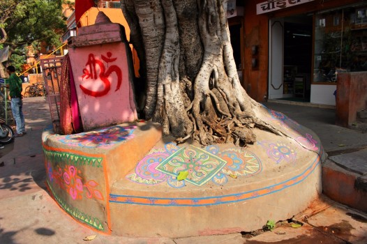 Golden Triangle India Travel Blog (67)