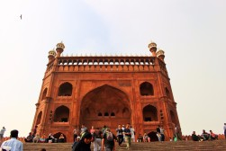 Golden Triangle India Travel Blog (7)