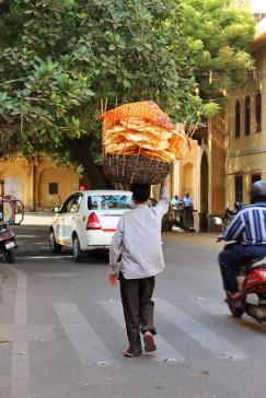Golden Triangle India Travel Blog (73)