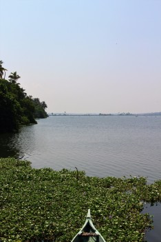Kerala India Travel Blog (6)