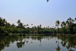 Kerala India Travel Blog (7)