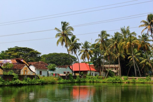 Kerala India Travel Blog (71)