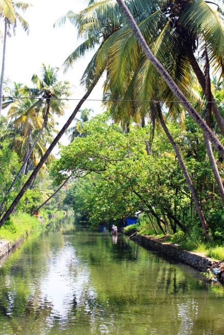Kerala India Travel Blog (9)