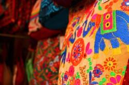 Pushkar to Udaipur India Travel Blog (10)