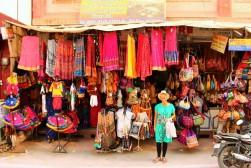 Pushkar to Udaipur India Travel Blog (11)