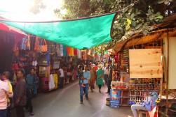 Pushkar to Udaipur India Travel Blog (12)