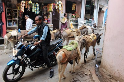 Pushkar to Udaipur India Travel Blog (121)