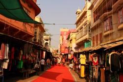 Pushkar to Udaipur India Travel Blog (14)