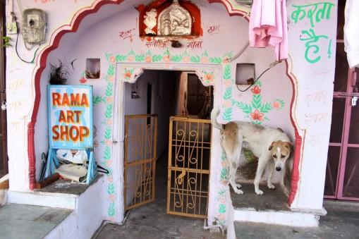 Pushkar to Udaipur India Travel Blog (16)
