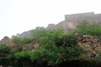 Pushkar to Udaipur India Travel Blog (29)