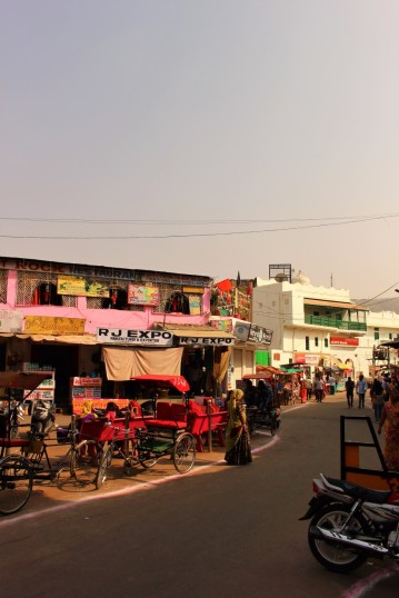 Pushkar to Udaipur India Travel Blog (3)