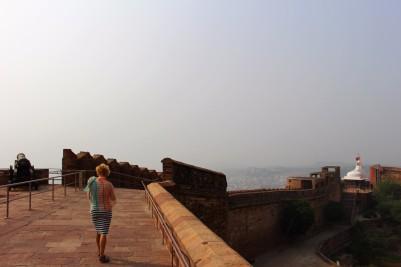 Pushkar to Udaipur India Travel Blog (71)