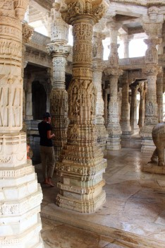 Pushkar to Udaipur India Travel Blog (89)