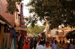 Pushkar to Udaipur India Travel Blog (9)