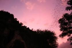 Cambodia Travel Blog (123)