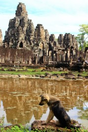 Cambodia Travel Blog (31)