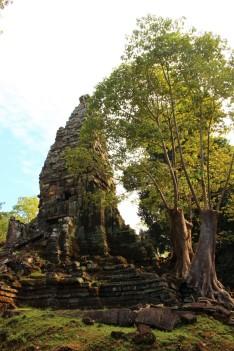 Cambodia Travel Blog (36)