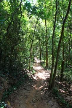 Cambodia Travel Blog (50)