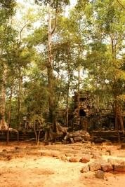 Cambodia Travel Blog (51)