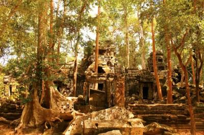 Cambodia Travel Blog (52)