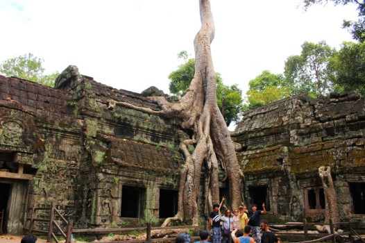 Cambodia Travel Blog (62)
