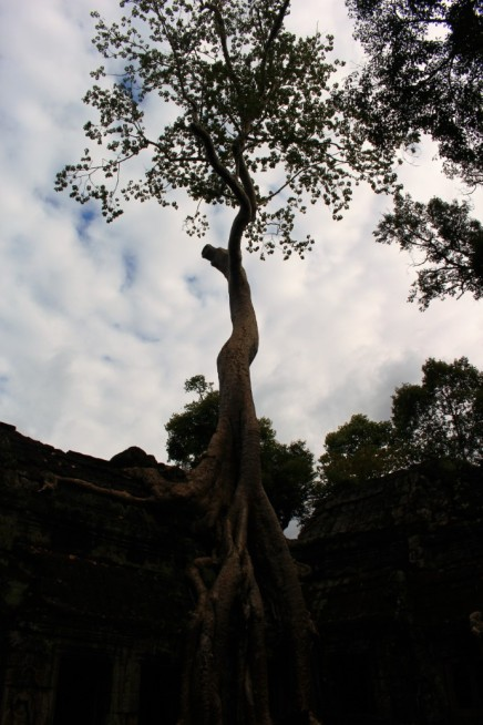 Cambodia Travel Blog (63)