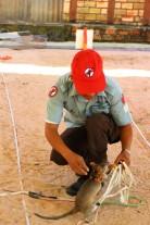 Cambodia Travel Blog (76)