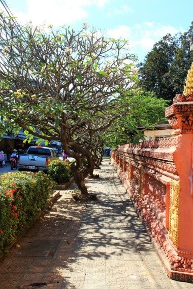 Cambodia Travel Blog (81)