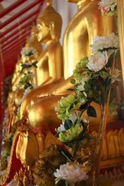 Thailand Travel Blog (16)