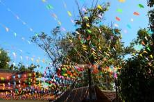 Thailand Travel Blog (23)