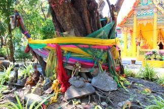 Thailand Travel Blog (44)