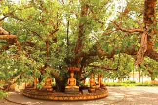 Laos Travel Blog 2 (35)