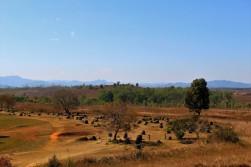 Laos Travel Blog (30)