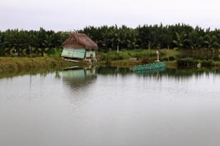 Vietnam Travel Blog (124)