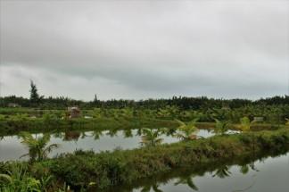 Vietnam Travel Blog (127)