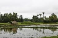 Vietnam Travel Blog (131)
