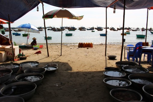 Vietnam Travel Blog (30)