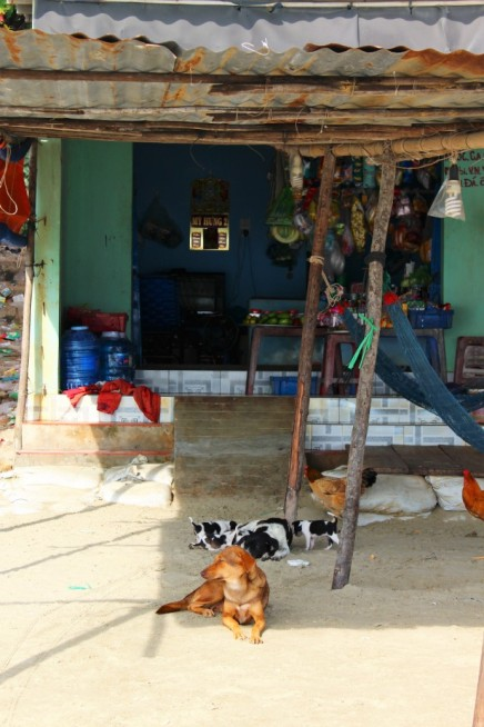 Vietnam Travel Blog (36)