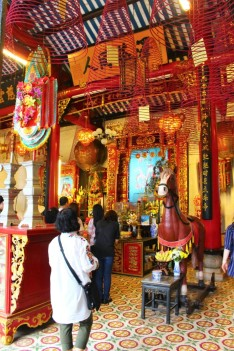 Vietnam Travel Blog (91)