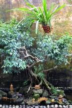 Vietnam Travel Blog (98)