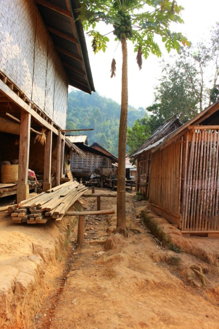 Laos Travel Blog 3 (127)