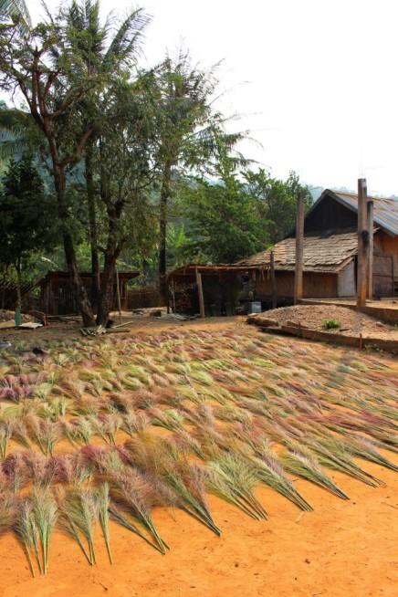 Laos Travel Blog 3 (131)